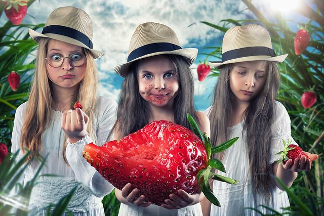 Strawberry pickers