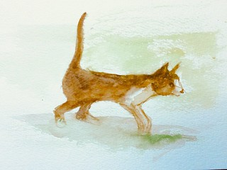 Watercolour brush sketch only by jmsw. Visitor to the garden, passing through.