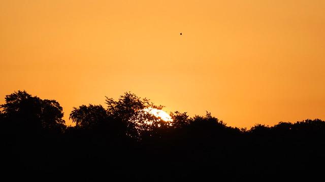 May Dawn