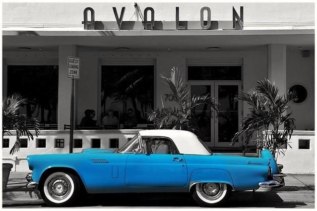 T at The Avolon Hotel