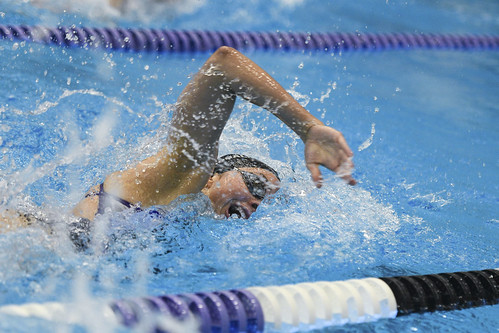 2018 - Williams at Amherst Womens Swimming