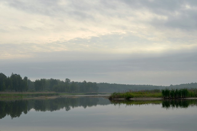 Morning on the shallowed lake. Lebedin, Sumy region Ukraine.