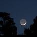 Luna Cenicienta en Fuencaliente de La Palma