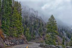 Memories of Yellowstone  (由  CR Courson