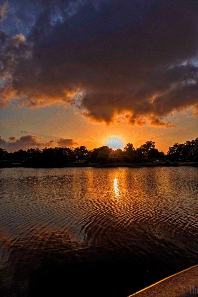 Shy Pond sunset.