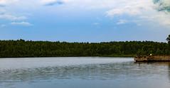 Upchurch Lake 4