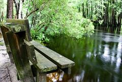 Lumber River State Park 3
