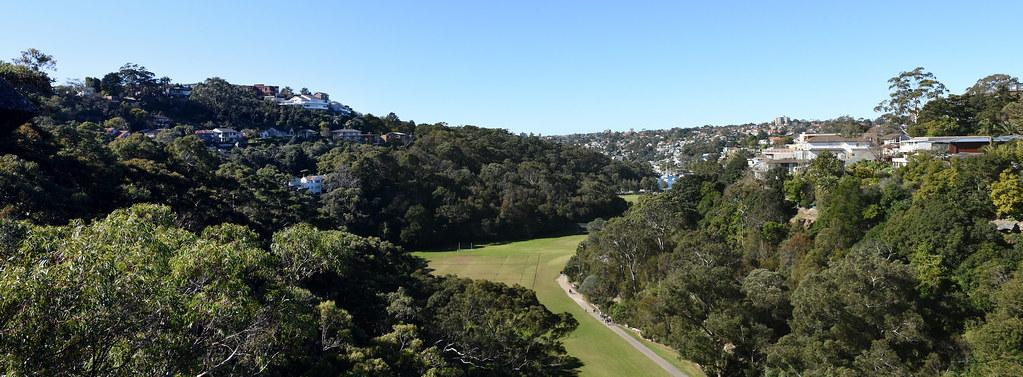 Trunks Park, Cammeray, Sydney, NSW.
