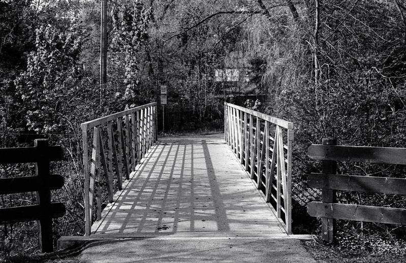 Morrison Creek Foot Bridge Late May 2020