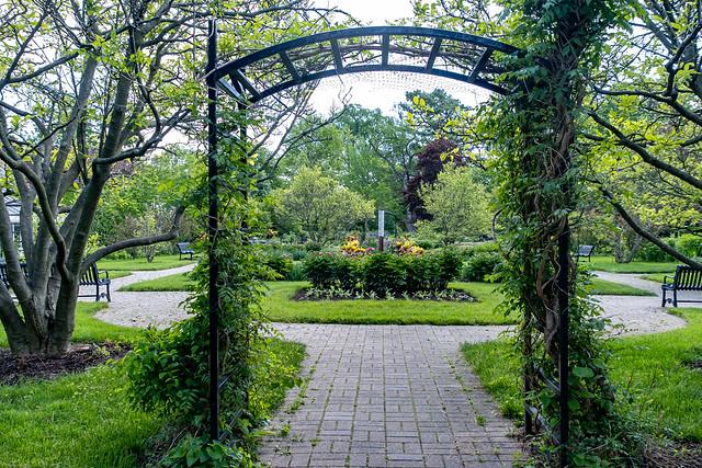Wedding Garden Enterance 149 of 365 (Year 7)