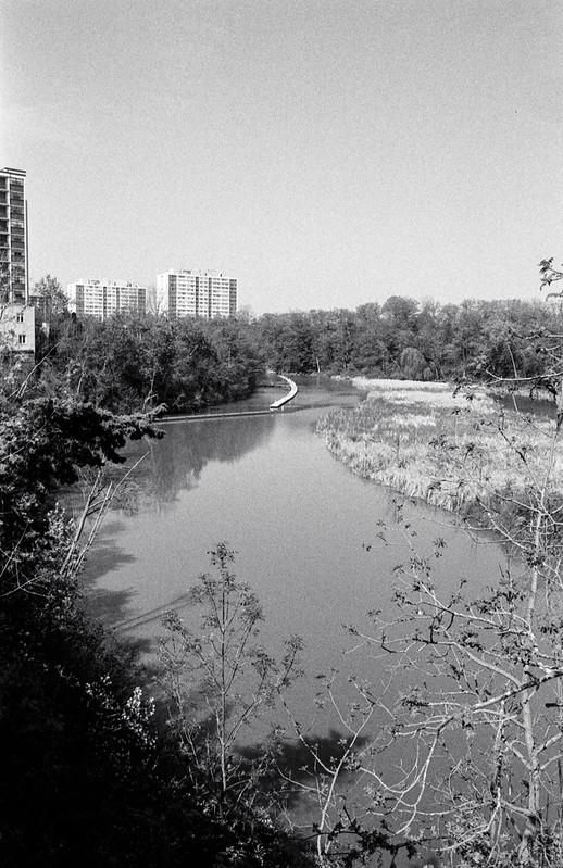 16 Mile Creek in the Sun