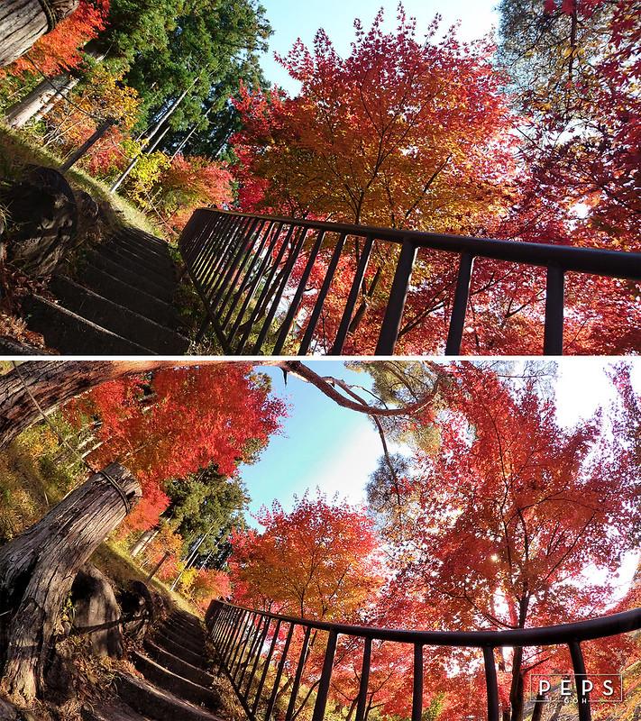 autumn-stairway