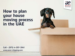 House movers in the gulf region