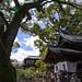 Ushitora Shrine