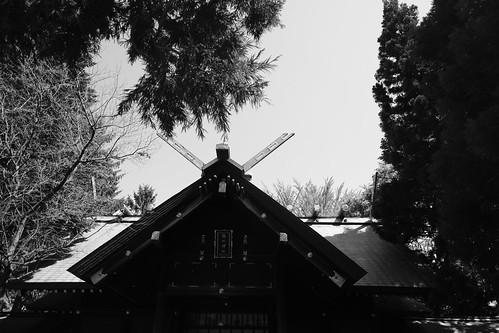 30-05-2020 Kotoni area, Sapporo (7)