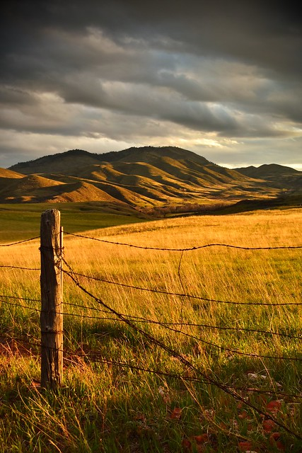 Barb Wire & Rolling Hills