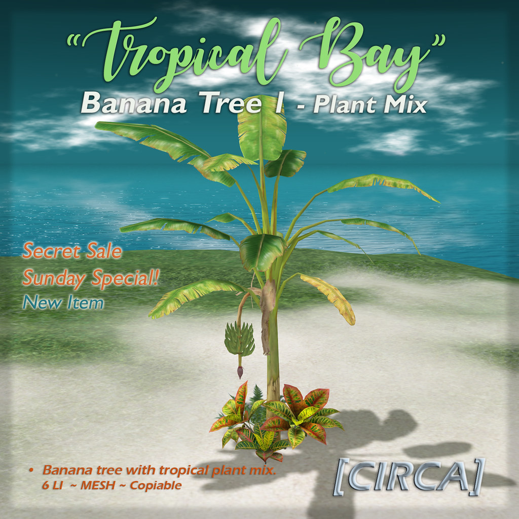 "SSS Event Item | [CIRCA] – ""Tropical Bay"" Banana Tree 1 – Plant Mix"