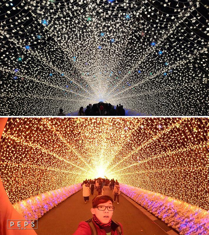 nabana-no-sato-tunnel