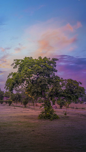 lovelysunsetonkaleemshaheedparkfaisalabad kaleemshaheedpark parks gardens mountains faisalabad pakistan amazing landscapes special pictuers awsome colors