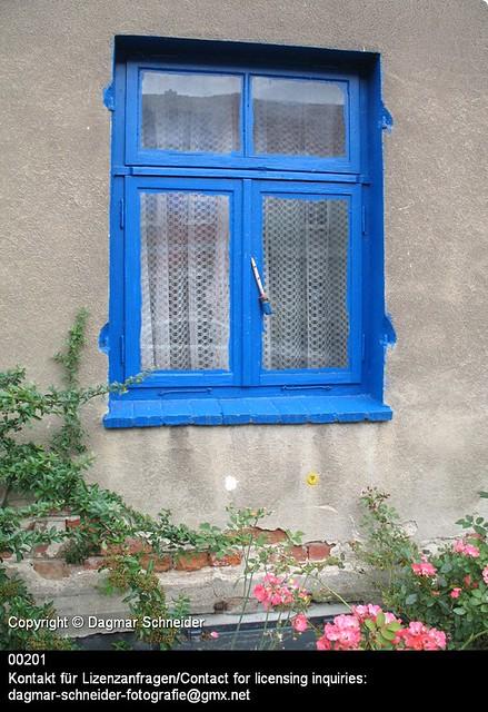 Blaues Fenster   Blue window