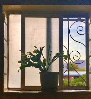 Open Window to a Desert Morning