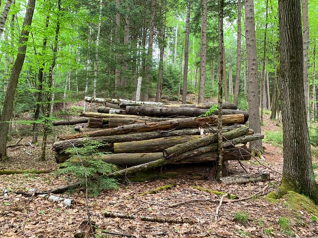 Chambers Memorial Reserve: lebanon hiking unitedstatesofamerica newhampshire westlebanon chambersmemorialreserve