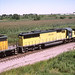 C&NW SD60 #8004 rolls west at Dekalb IL on 8/14/94