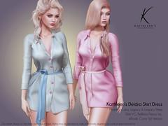 Kaithleen's Deidra Shirt Dress Poster web