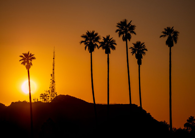 Hollywood Sunset