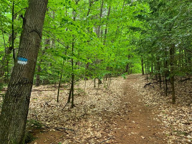 Chambers Memorial Reserve: hiking lebanon newhampshire chambersmemorialreserve westlebanon unitedstatesofamerica