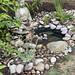 New wildlife pond 🐛🐸🐝🌿🌞