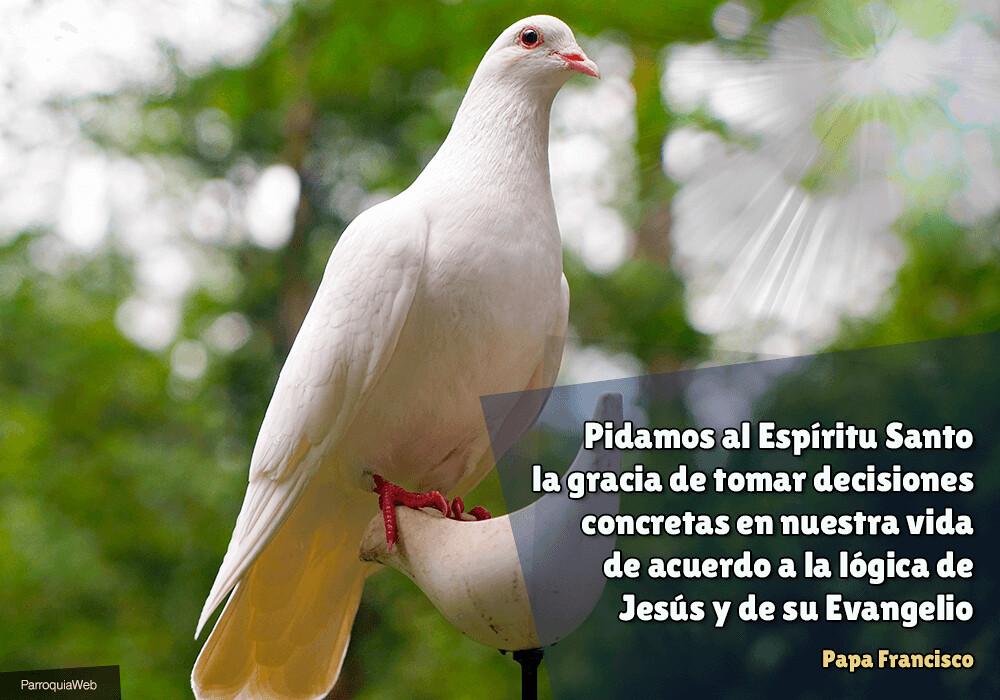 Pidamos al Espíritu Santo la gracia de tomar decisiones concretas en nuestra vida de acuerdo a la lógica de Jesús y de su Evangelio - Papa Francisco