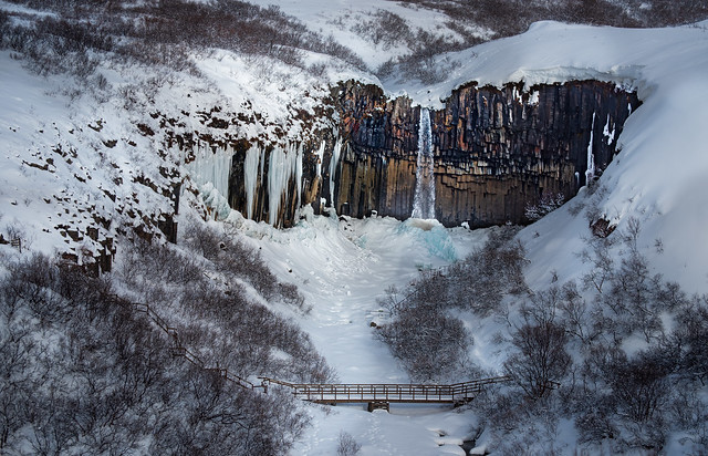 Svartifoss. Get there before the Germans