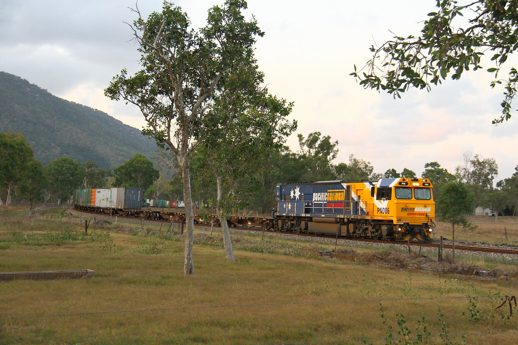 PN from Townsville by David Arnold