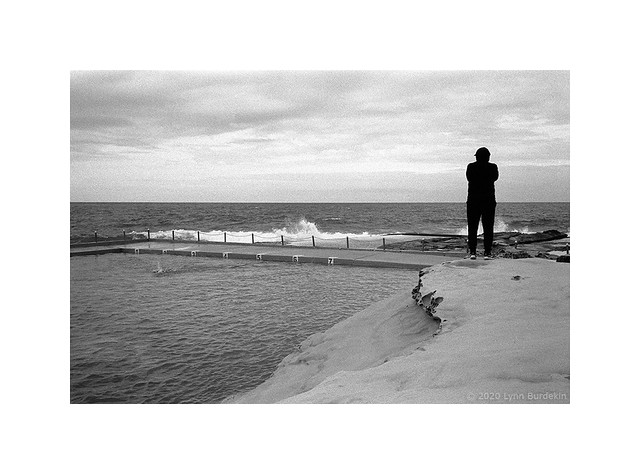 Solitary, Sydney, March 2020  #523