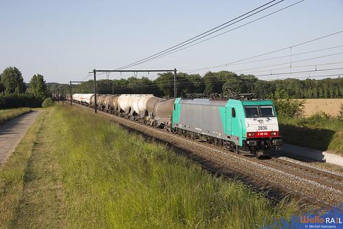 2836 . LNS . E 44533 . 's Herenelderen (Tongeren) 29.05.20.
