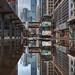 After the rain of Hong Kong