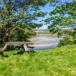 Picnic area by the river at Preston