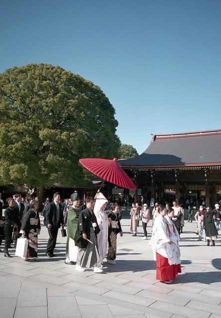 A scene in Meiji Jingu Shrine,Tokyo 2020/02 No.5(taken by film camera).