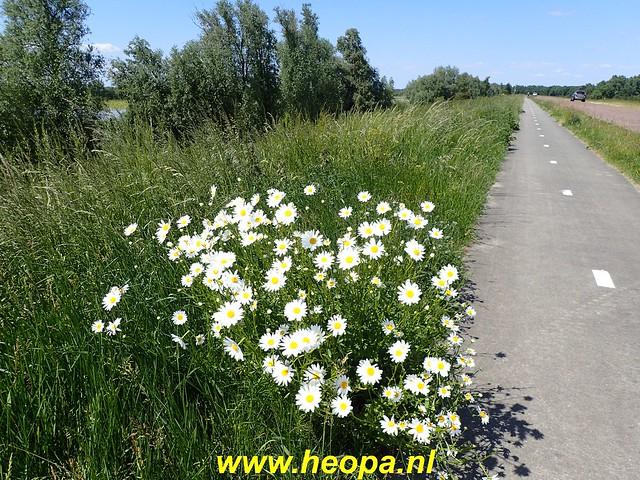 012020-05-30 Knarbos-oost        Hollandsehout  25 Km   (80)