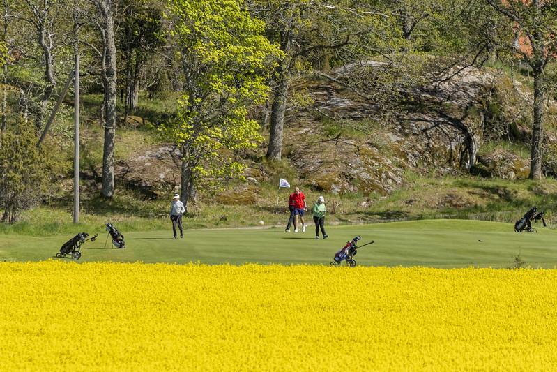 Why playing a yellow golf ball makes sense