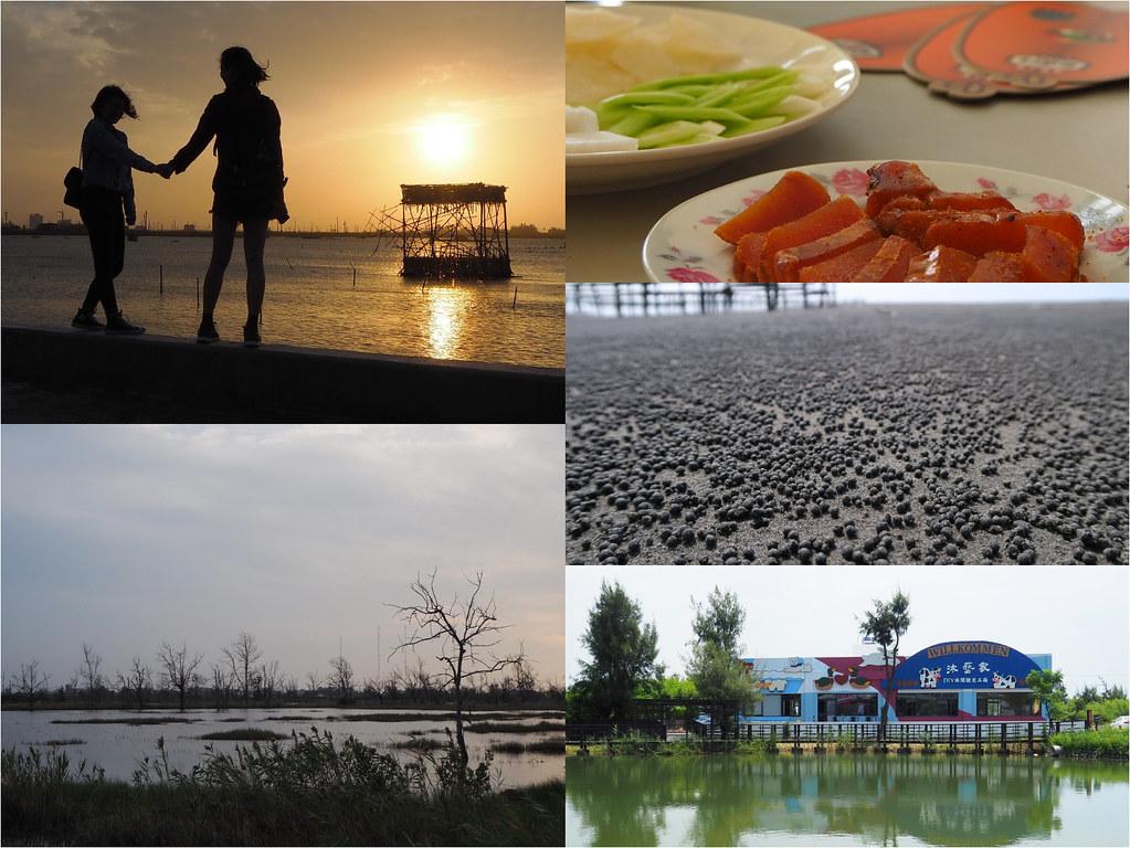 雲嘉南濱海風景區 (3)