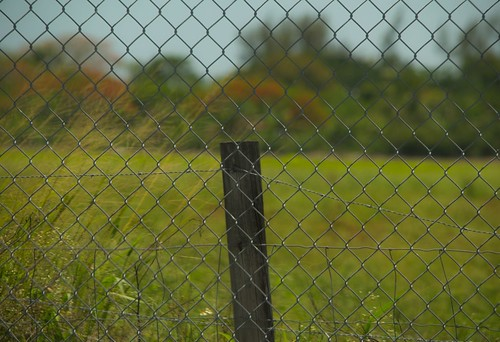 rural fence post bokeh chainlink fencepost nikond3200 trees country farmland wooden