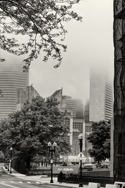 Morning Fog--Downtown