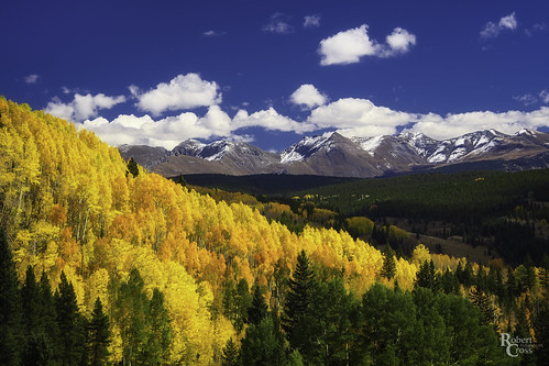1250mmf3563mzuiko co colorado em5 milliondollarhighway mountainwest omd olympus rockies rockymountains sanjuanmountains sanjuanskyway aspens autumn bluesky clouds fall foliage forest landscape leaves mirrorless mountains snow trees