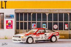 Miniaturas rally
