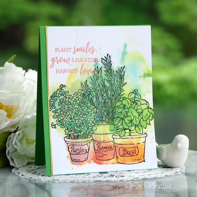 plant smiles -002