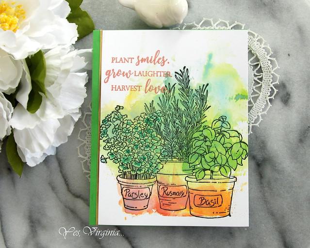 plant smiles -003