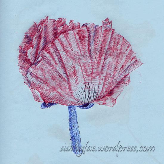 poppy drawn in biro