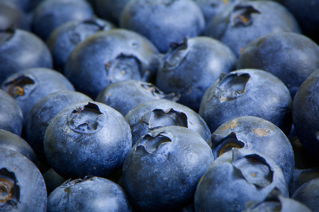 Fill the Frame - with Blueberries